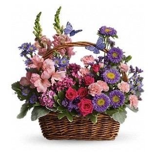 aaa Country Basket Blooms by florist